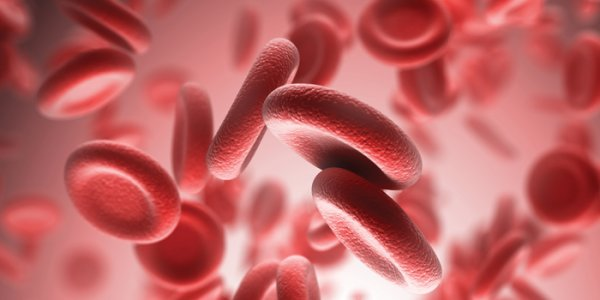 consulta en hematologia