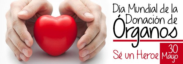 En lo que va de 2018 se realizaron 673 trasplantes, según informó el Instituto Nacional Central Único Coordinador de Ablación e Implante (Incucai), en el Día Nacional de la Donación de Órganos, que se conmemora cada 30 de mayo.